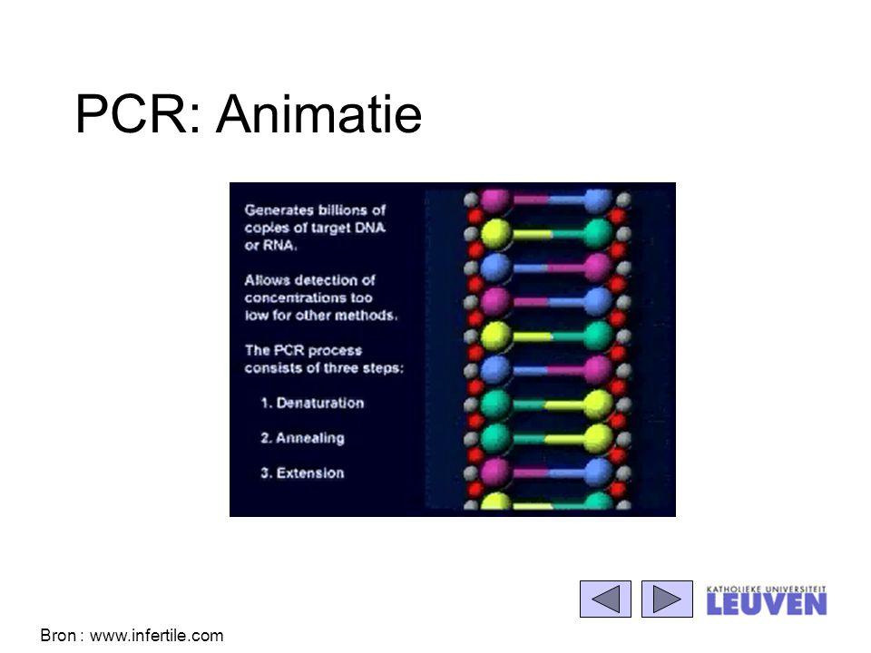 PCR: Animatie Bron : www.infertile.com