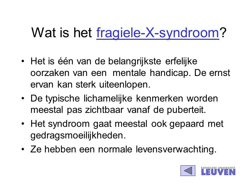 Wat is het fragiele-X-syndroom? Het is één van de belangrijkste erfelijke oorzaken van een mentale handicap. De ernst ervan kan sterk uiteenlopen. De