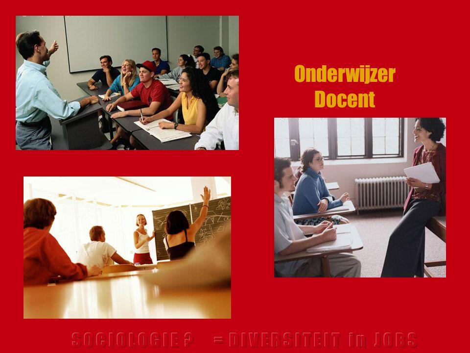 Onderwijzer Docent