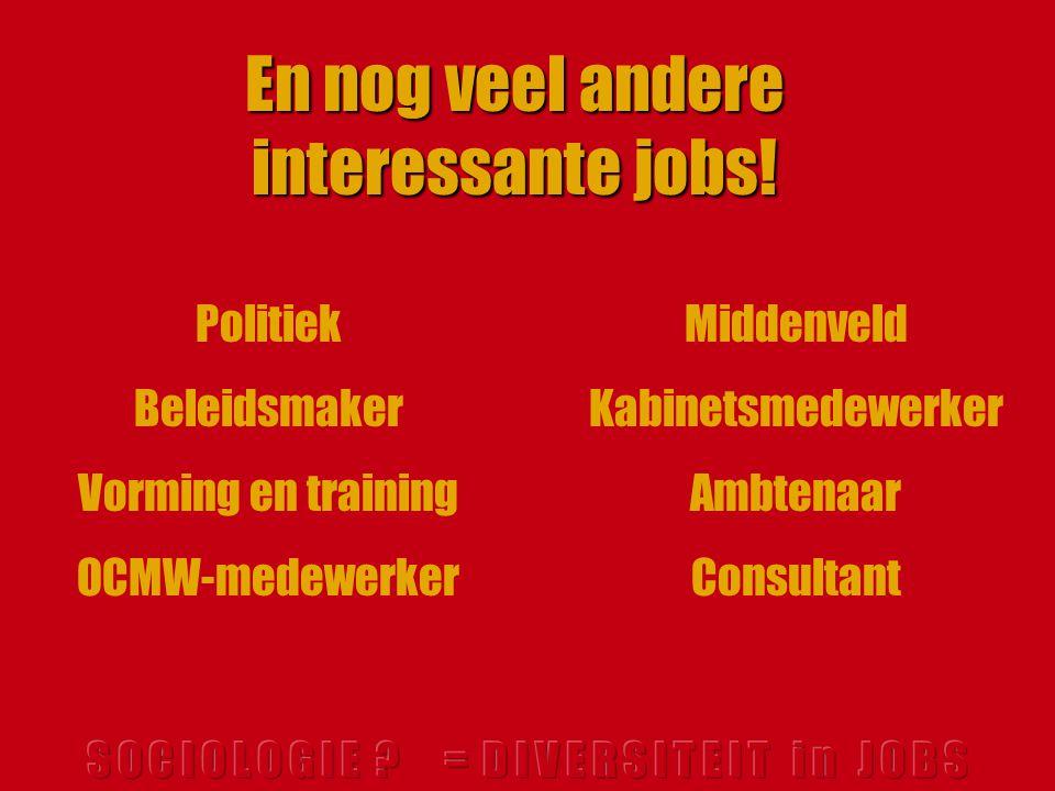 Middenveld Kabinetsmedewerker Ambtenaar Consultant En nog veel andere interessante jobs.