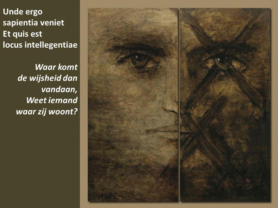 Unde ergo sapientia veniet Et quis est locus intellegentiae Waar komt de wijsheid dan vandaan, Weet iemand waar zij woont?