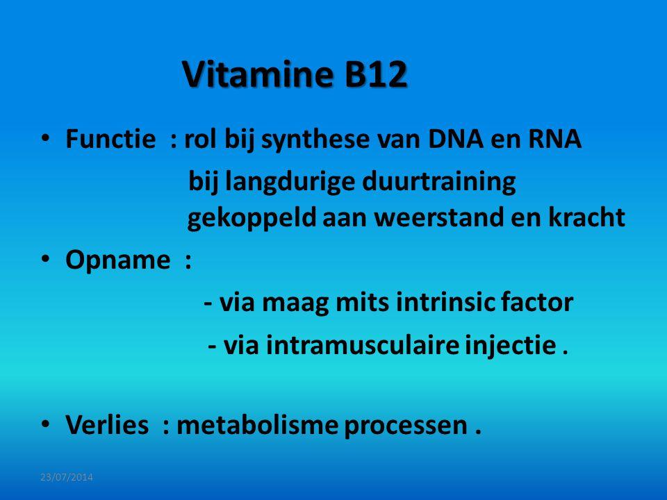 Vitamine B12 Functie : rol bij synthese van DNA en RNA bij langdurige duurtraining gekoppeld aan weerstand en kracht Opname : - via maag mits intrinsi