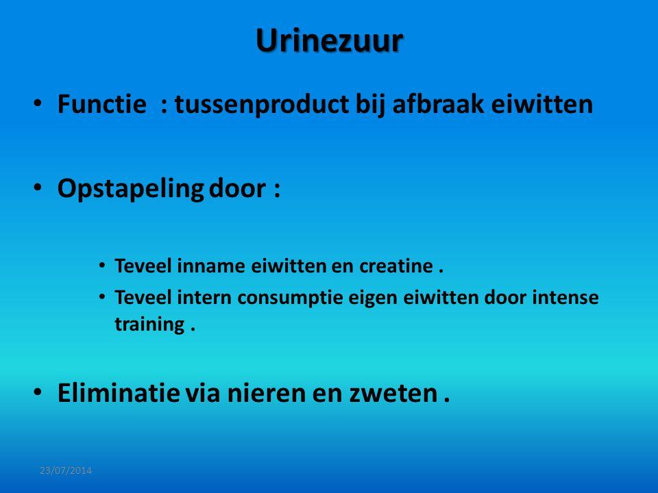 Urinezuur Functie : tussenproduct bij afbraak eiwitten Opstapeling door : Teveel inname eiwitten en creatine. Teveel intern consumptie eigen eiwitten