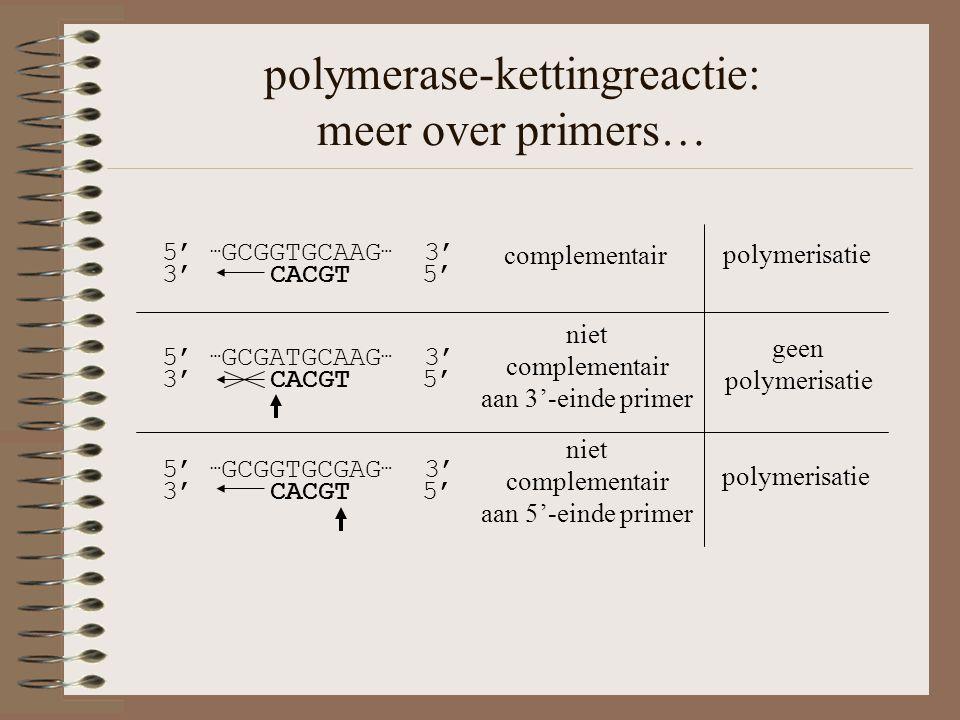 polymerase-kettingreactie: meer over primers… geen polymerisatie 5' … GCGATGCAAG … 3' 3' CACGT 5' niet complementair aan 3'-einde primer polymerisatie 5' … GCGGTGCGAG … 3' 3' CACGT 5' niet complementair aan 5'-einde primer polymerisatie 5' … GCGGTGCAAG … 3' 3' CACGT 5' complementair
