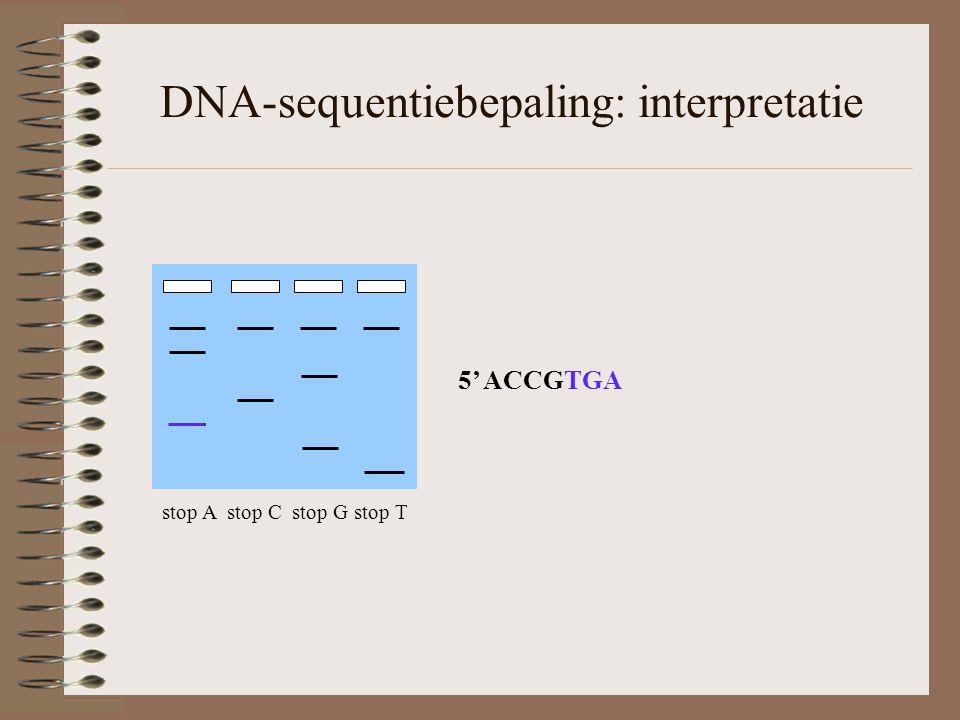 DNA-sequentiebepaling: interpretatie stop A stop C stop G stop T 5' ACCGTGA