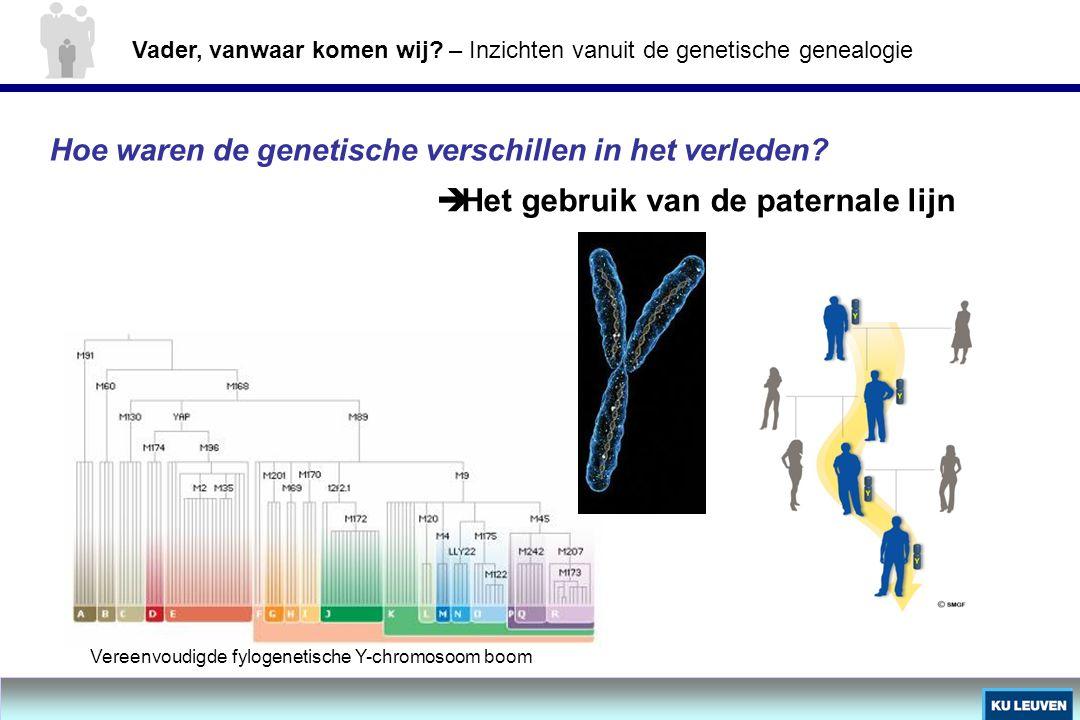 Hoe waren de genetische verschillen in het verleden?  Het gebruik van de paternale lijn Vereenvoudigde fylogenetische Y-chromosoom boom Vader, vanwaa
