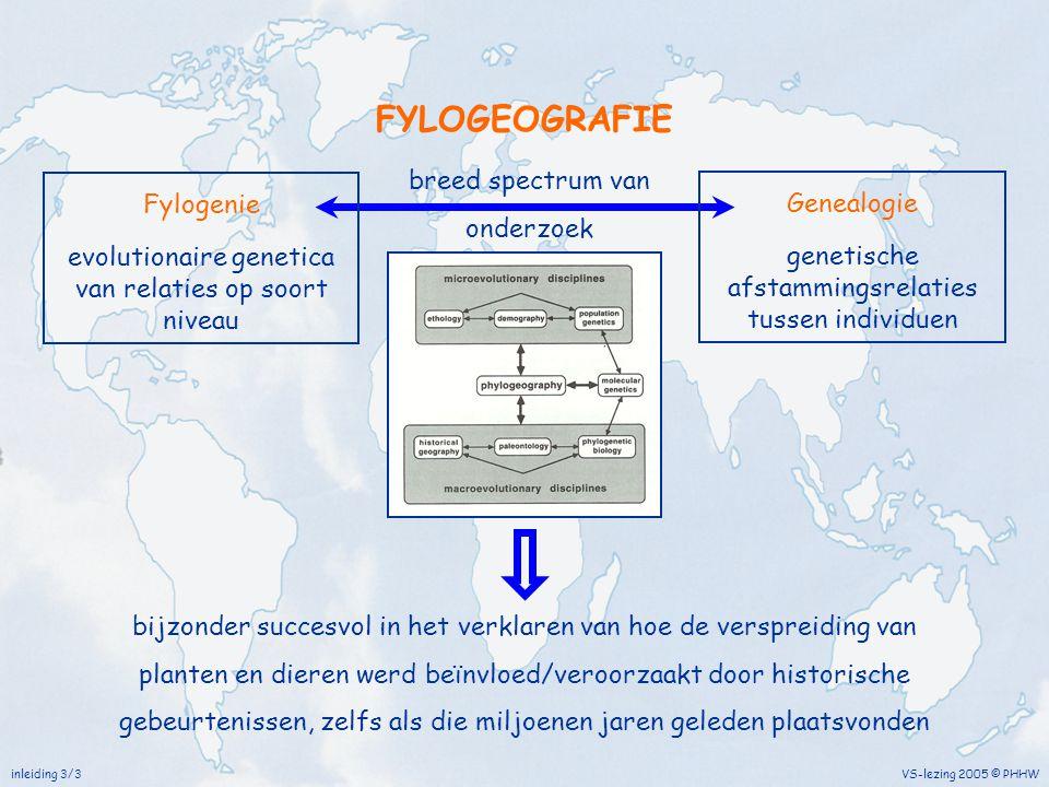 inleiding 3/3 VS-lezing 2005 © PHHW FYLOGEOGRAFIE bijzonder succesvol in het verklaren van hoe de verspreiding van planten en dieren werd beïnvloed/ve