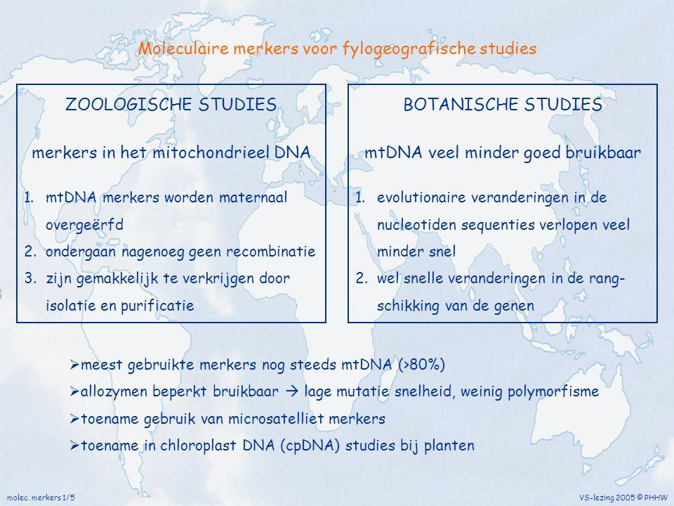 Moleculaire merkers voor fylogeografische studies molec. merkers 1/5 VS-lezing 2005 © PHHW ZOOLOGISCHE STUDIES merkers in het mitochondrieel DNA 1.mtD
