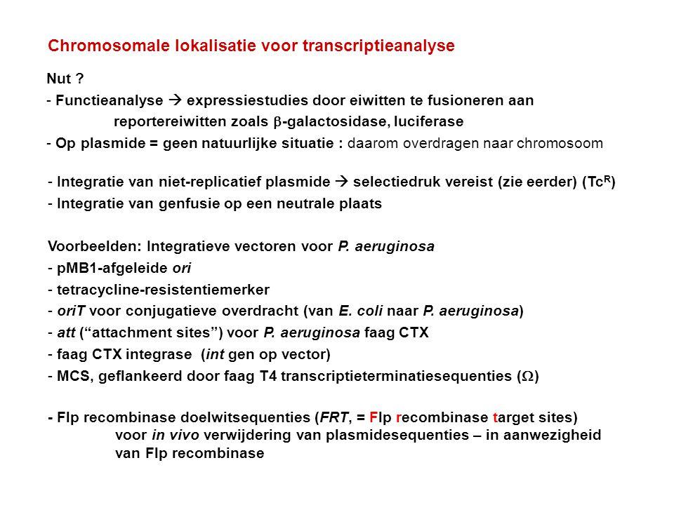 Chromosomale lokalisatie voor transcriptieanalyse - Integratie van niet-replicatief plasmide  selectiedruk vereist (zie eerder) (Tc R ) - Integratie
