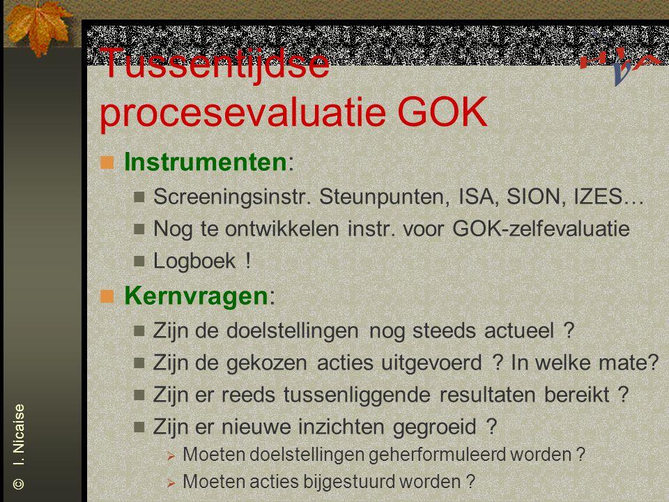 Tussentijdse procesevaluatie GOK Instrumenten: Screeningsinstr. Steunpunten, ISA, SION, IZES… Nog te ontwikkelen instr. voor GOK-zelfevaluatie Logboek