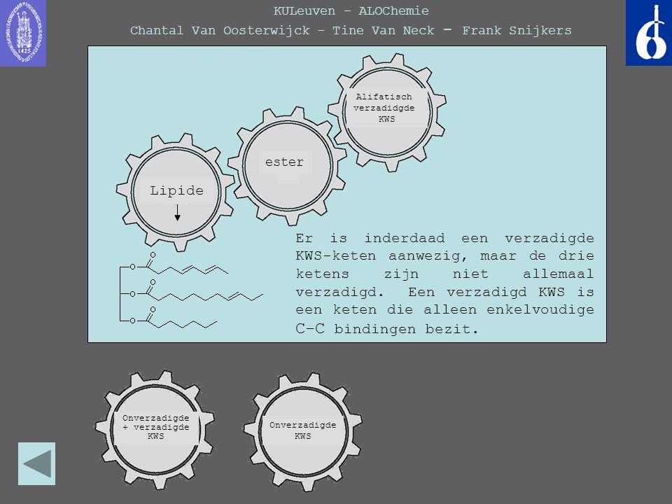 KULeuven - ALOChemie Chantal Van Oosterwijck - Tine Van Neck - Frank Snijkers Er is inderdaad een verzadigde KWS-keten aanwezig, maar de drie ketens z