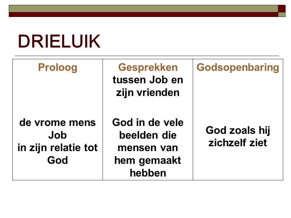 DRIELUIK Proloog de vrome mens Job in zijn relatie tot God Gesprekken tussen Job en zijn vrienden God in de vele beelden die mensen van hem gemaakt hebben Godsopenbaring God zoals hij zichzelf ziet
