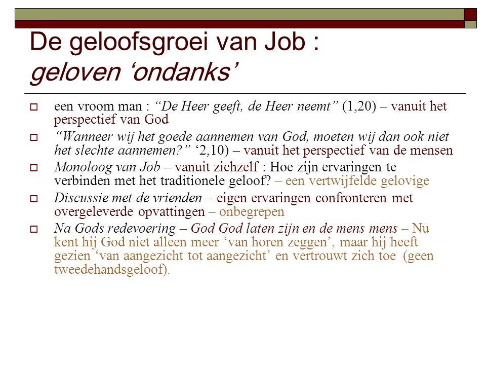 """De geloofsgroei van Job : geloven 'ondanks'  een vroom man : """"De Heer geeft, de Heer neemt"""" (1,20) – vanuit het perspectief van God  """"Wanneer wij he"""