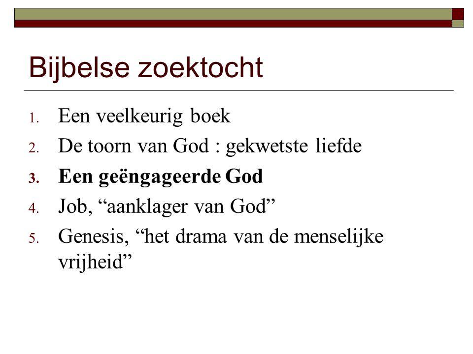 Bijbelse zoektocht 1. Een veelkeurig boek 2. De toorn van God : gekwetste liefde 3.