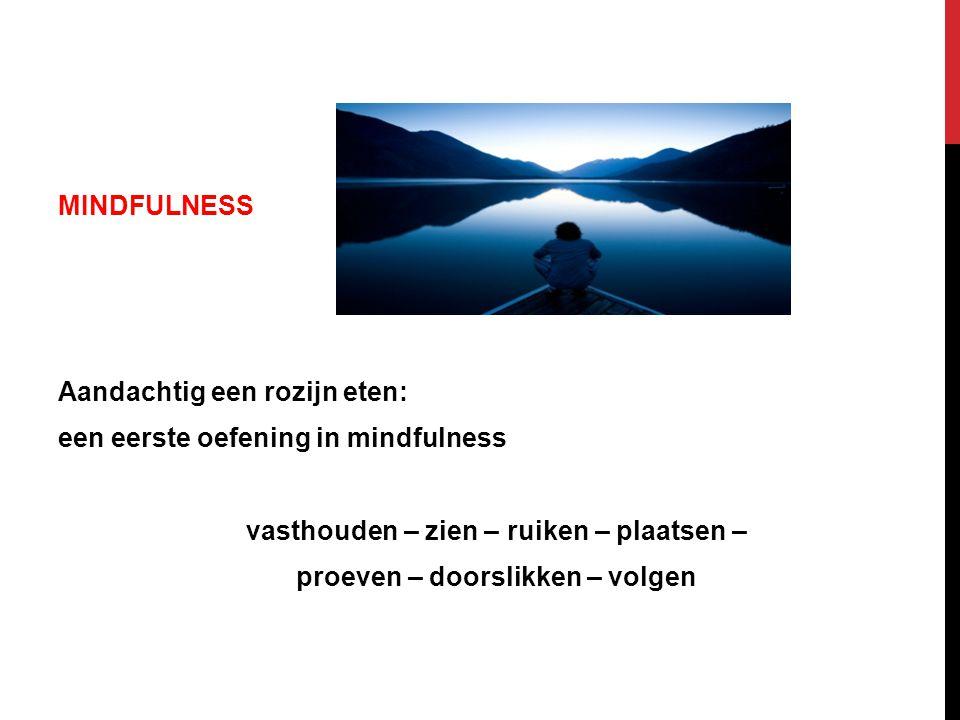 MINDFULNESS Aandachtig een rozijn eten: een eerste oefening in mindfulness vasthouden – zien – ruiken – plaatsen – proeven – doorslikken – volgen