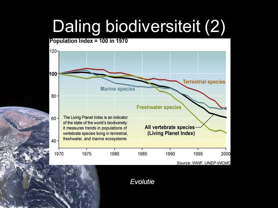 Daling biodiversiteit (2) Evolutie