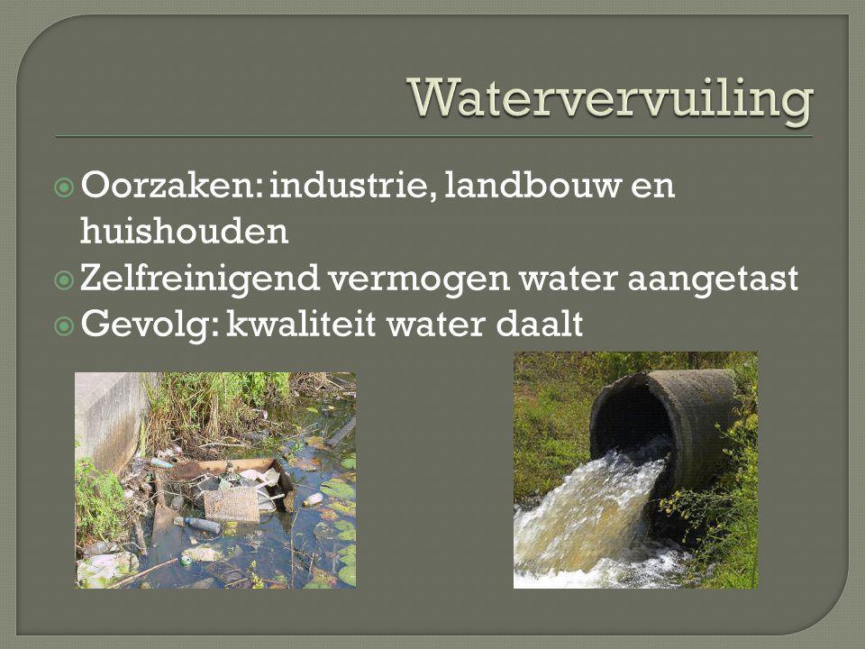  Oorzaken: industrie, landbouw en huishouden  Zelfreinigend vermogen water aangetast  Gevolg: kwaliteit water daalt