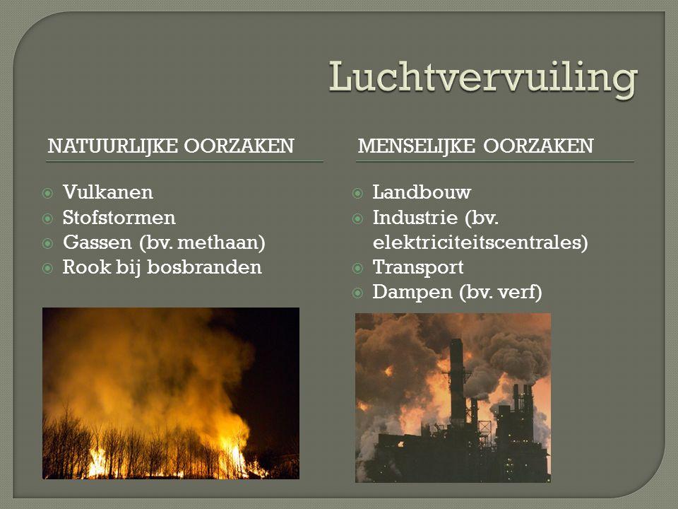 NATUURLIJKE OORZAKENMENSELIJKE OORZAKEN  Vulkanen  Stofstormen  Gassen (bv.