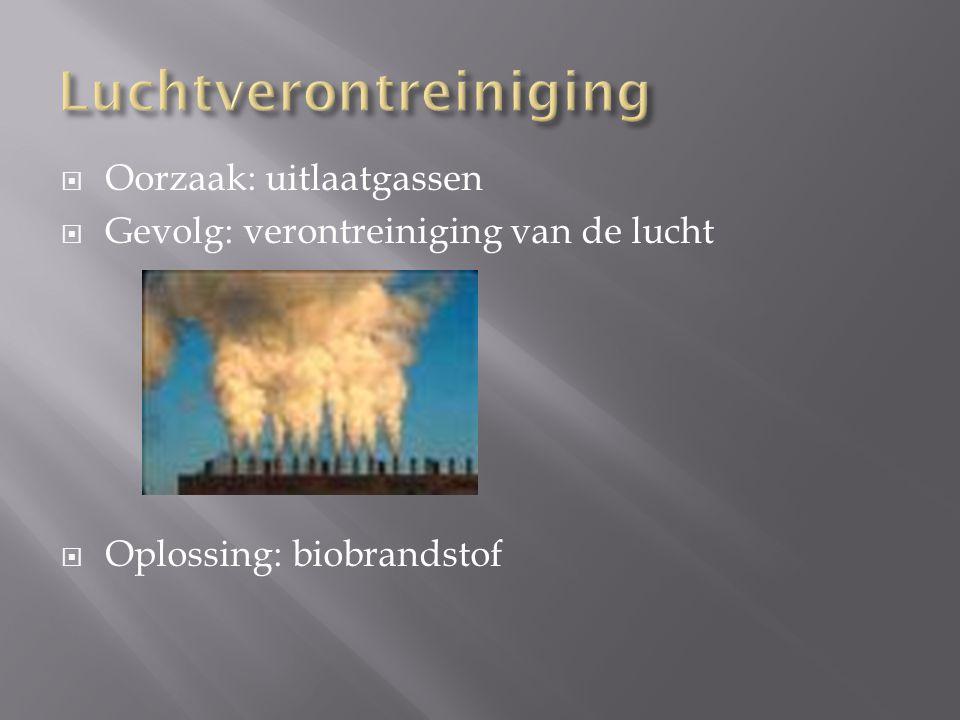  Oorzaak: uitlaatgassen  Gevolg: verontreiniging van de lucht  Oplossing: biobrandstof