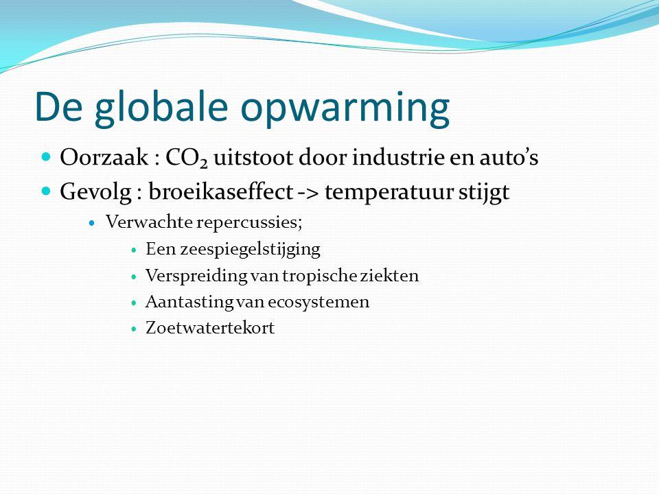 De globale opwarming Oorzaak : CO₂ uitstoot door industrie en auto's Gevolg : broeikaseffect -> temperatuur stijgt Verwachte repercussies; Een zeespie