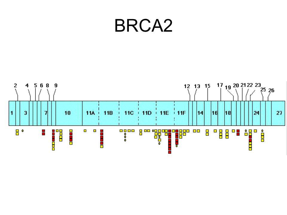 Familiale BRCAX mutatie is gekend Genetische test bij niet aangetaste verwant –raadpleging geneticus voor medische informatie –counseling bij psycholoog –bloedname voor analyse (+bespreking van risico's) –raadpleging geneticus voor bespreking resultaat bespreking praktische aspecten van opvolging organisatie van psycho-sociale follow-up Predictieve genetische test