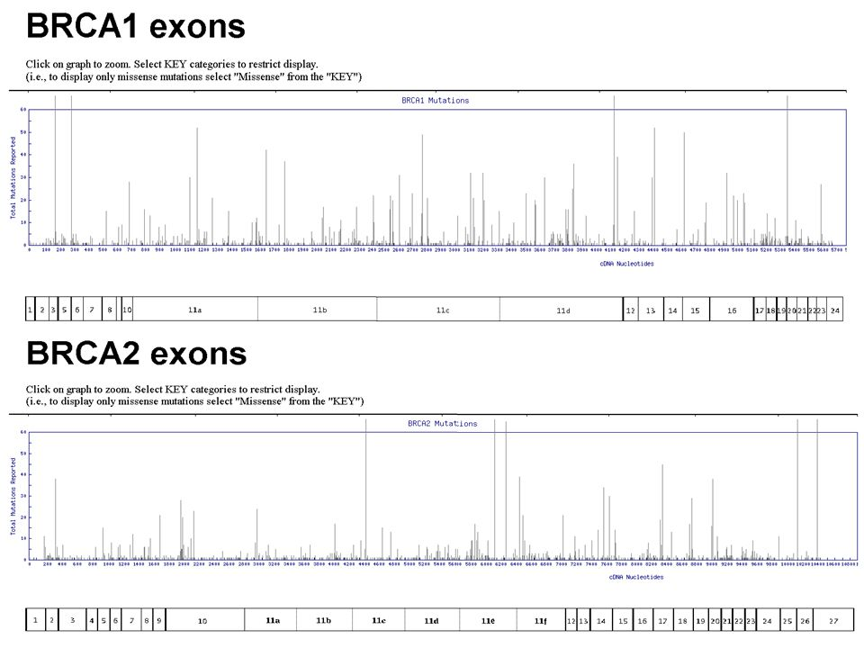 Sequencing - ddNTP Sanger sequencing