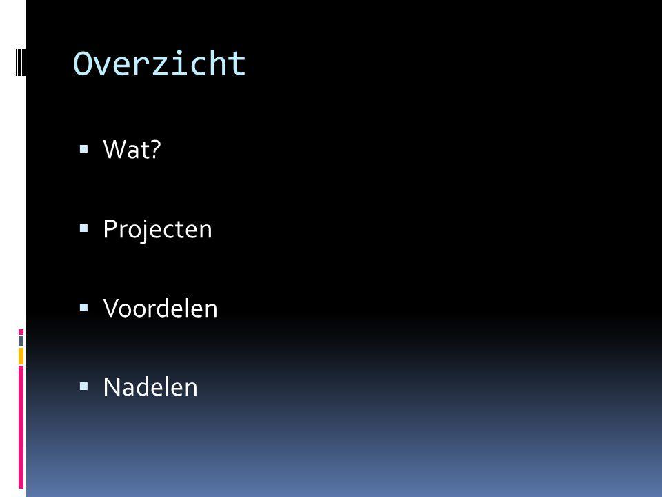 Overzicht  Wat?  Projecten  Voordelen  Nadelen