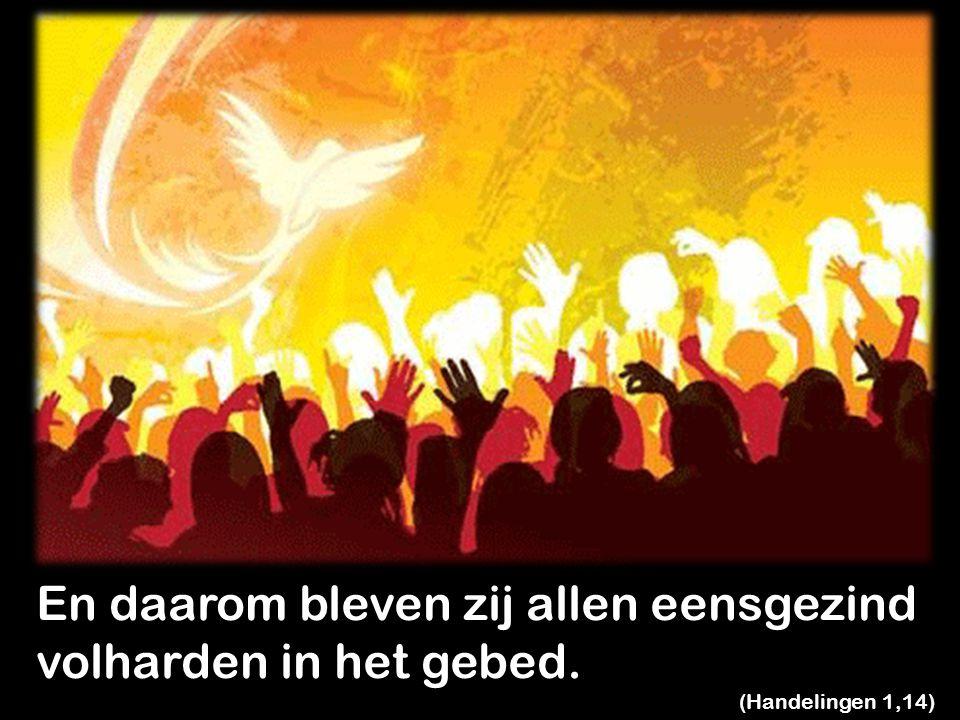 Zij geloofde wat Jezus gezegd had: 'Gij zult kracht ontvangen van de heilige Geest die over u komt.' (Handelingen 1,8)