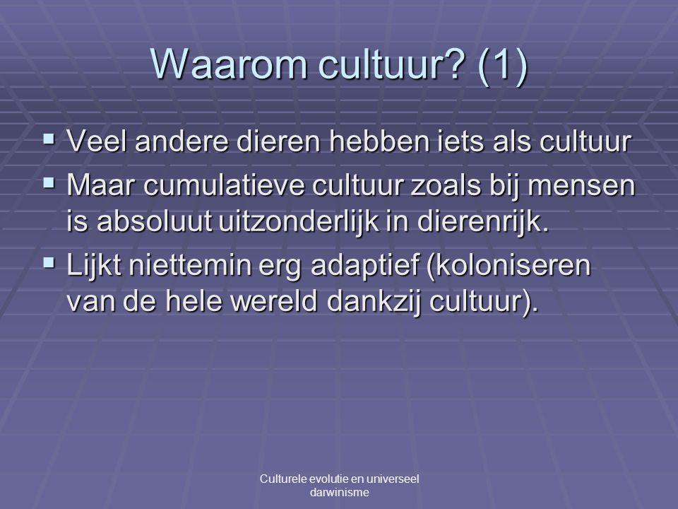 Waarom cultuur.