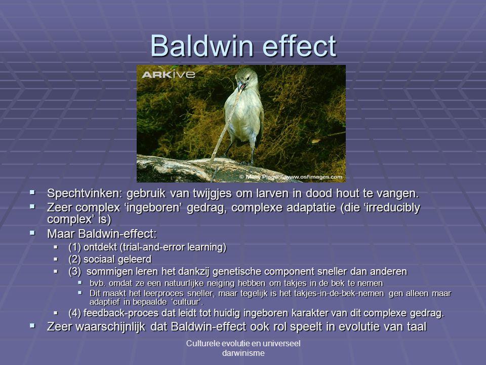 Baldwin effect Culturele evolutie en universeel darwinisme  Spechtvinken: gebruik van twijgjes om larven in dood hout te vangen.