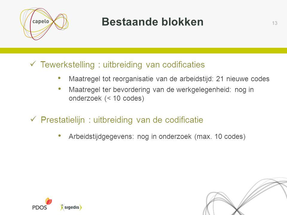 13 Bestaande blokken Tewerkstelling : uitbreiding van codificaties Maatregel tot reorganisatie van de arbeidstijd: 21 nieuwe codes Maatregel ter bevordering van de werkgelegenheid: nog in onderzoek (< 10 codes) Prestatielijn : uitbreiding van de codificatie Arbeidstijdgegevens: nog in onderzoek (max.