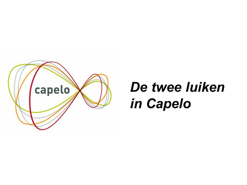 8 De twee luiken in Capelo