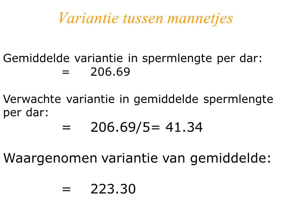 Variantie tussen mannetjes Gemiddelde variantie in spermlengte per dar: = 206.69 Verwachte variantie in gemiddelde spermlengte per dar: =206.69/5= 41.34 Waargenomen variantie van gemiddelde: =223.30