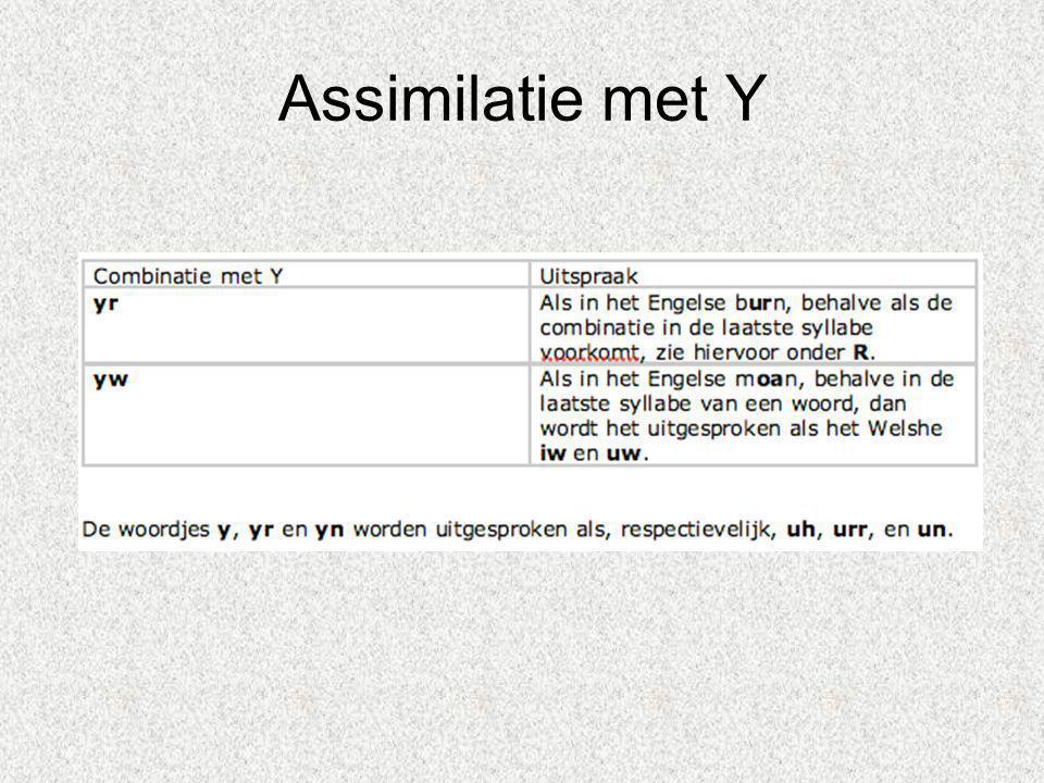 Assimilatie met Y