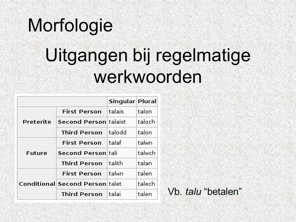 """Uitgangen bij regelmatige werkwoorden Vb. talu """"betalen"""" Morfologie"""