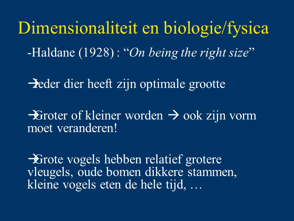 "Dimensionaliteit en biologie/fysica -Haldane (1928) : ""On being the right size""  Ieder dier heeft zijn optimale grootte  Groter of kleiner worden "