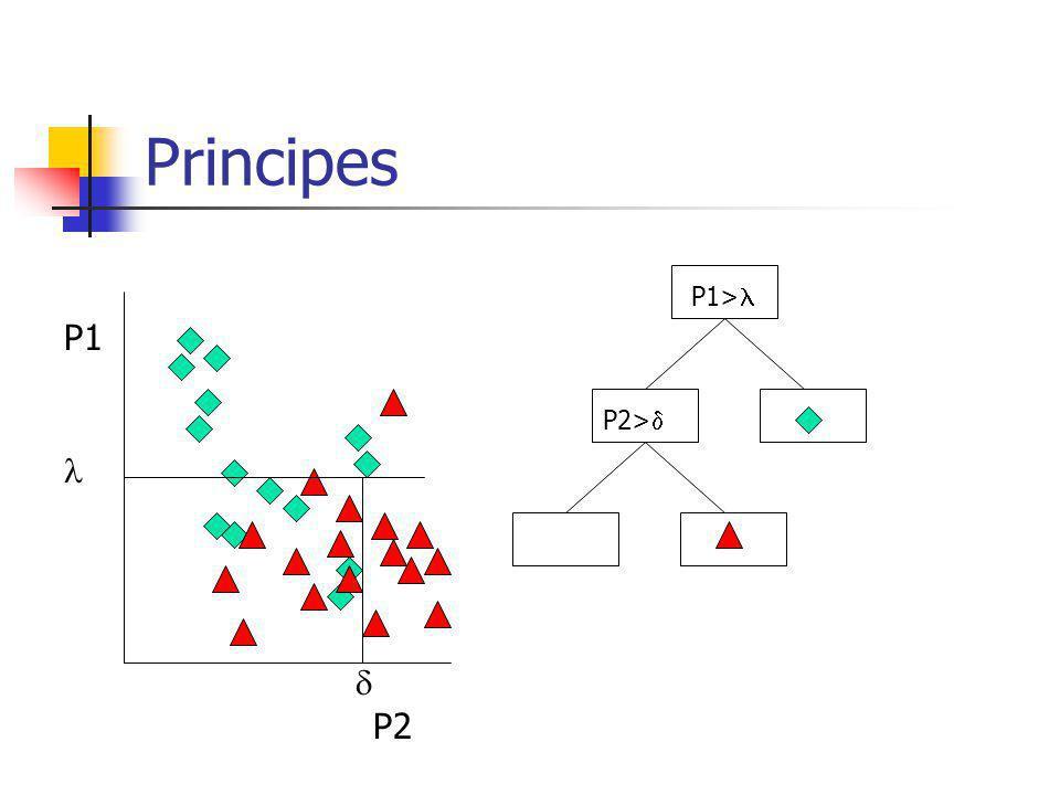 Principes P1 P2 P1>  P2> 