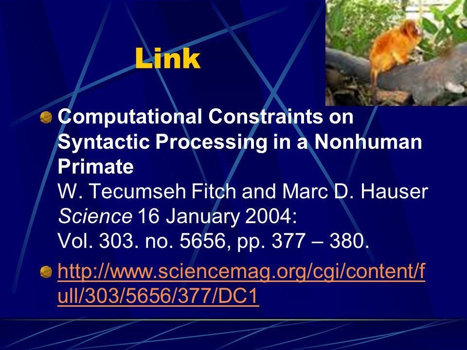 Link Computational Constraints on Syntactic Processing in a Nonhuman Primate W. Tecumseh Fitch and Marc D. Hauser Science 16 January 2004: Vol. 303. n