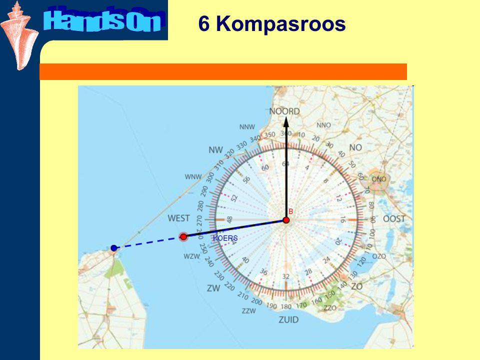 6 Kompasroos