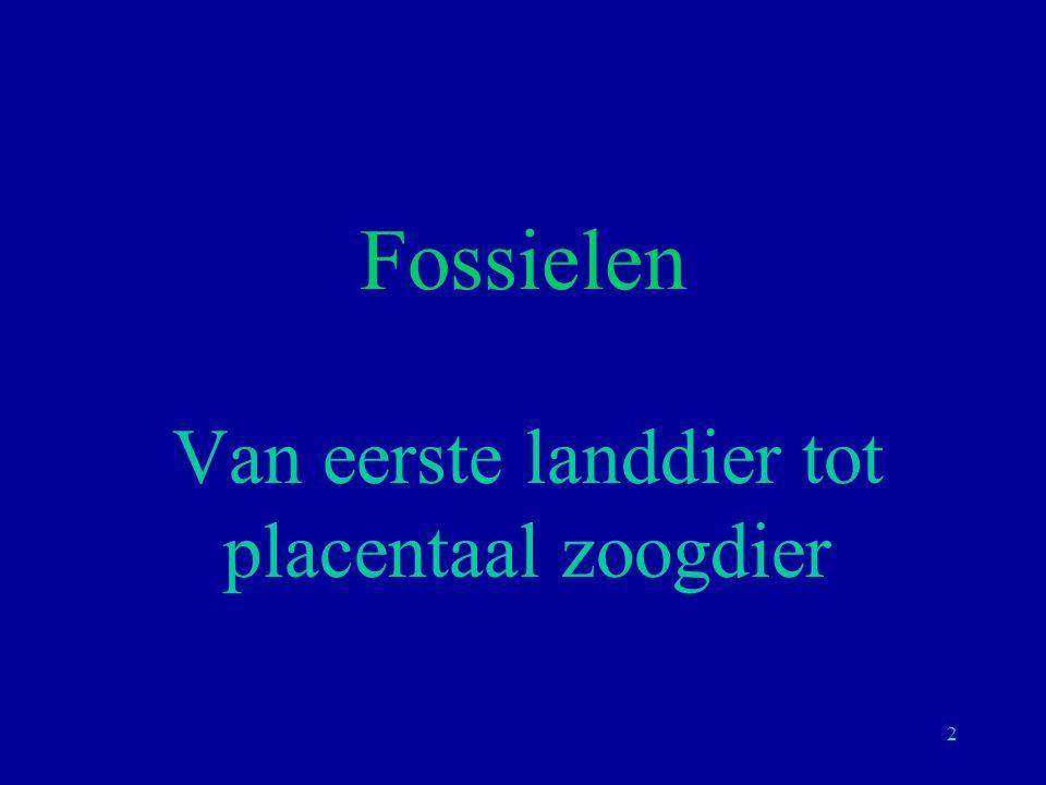 2 Fossielen Van eerste landdier tot placentaal zoogdier