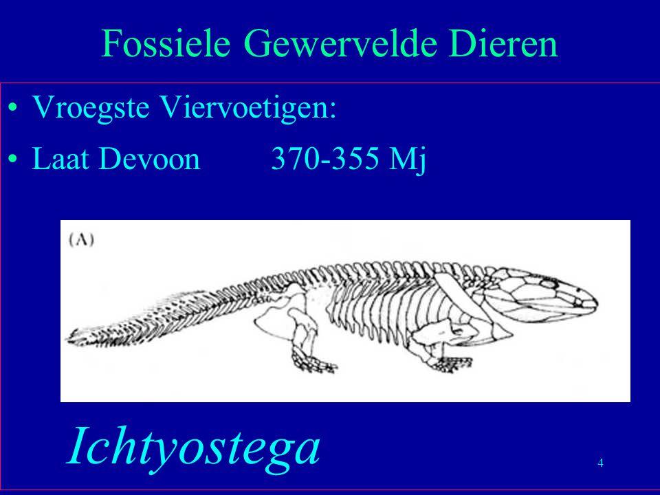 4 Vroegste Viervoetigen: Laat Devoon370-355 Mj Fossiele Gewervelde Dieren Ichtyostega