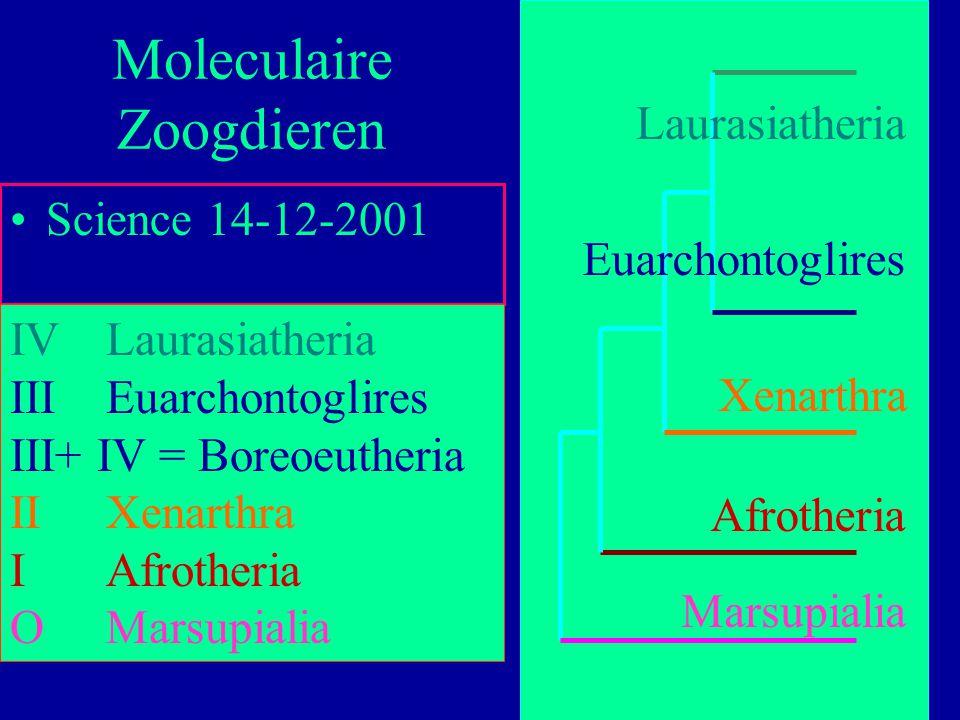 67 Science 14-12-2001 Moleculaire Zoogdieren IVLaurasiatheria IIIEuarchontoglires III+ IV = Boreoeutheria IIXenarthra IAfrotheria OMarsupialia Marsupi
