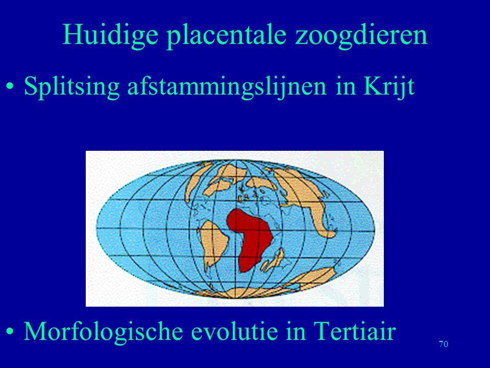 70 Splitsing afstammingslijnen in Krijt Morfologische evolutie in Tertiair Huidige placentale zoogdieren
