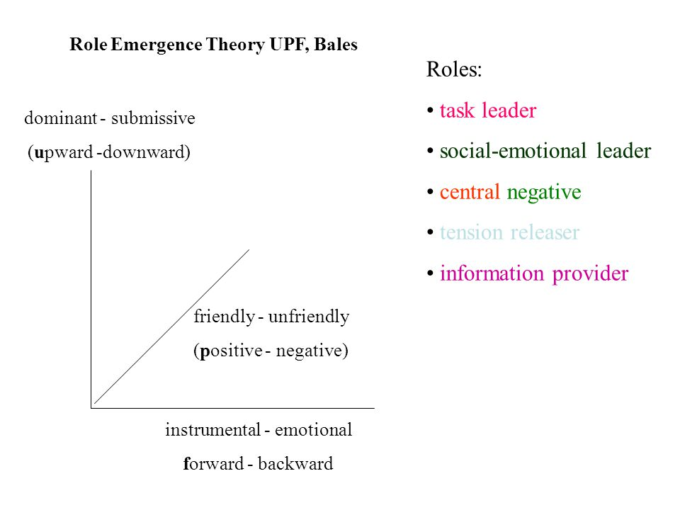 dominant - submissive (upward -downward) instrumental - emotional forward - backward friendly - unfriendly (positive - negative) Role Emergence Theory