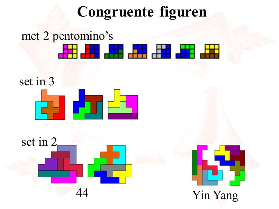 Congruente figuren Yin Yang met 2 pentomino's set in 3 set in 2 44