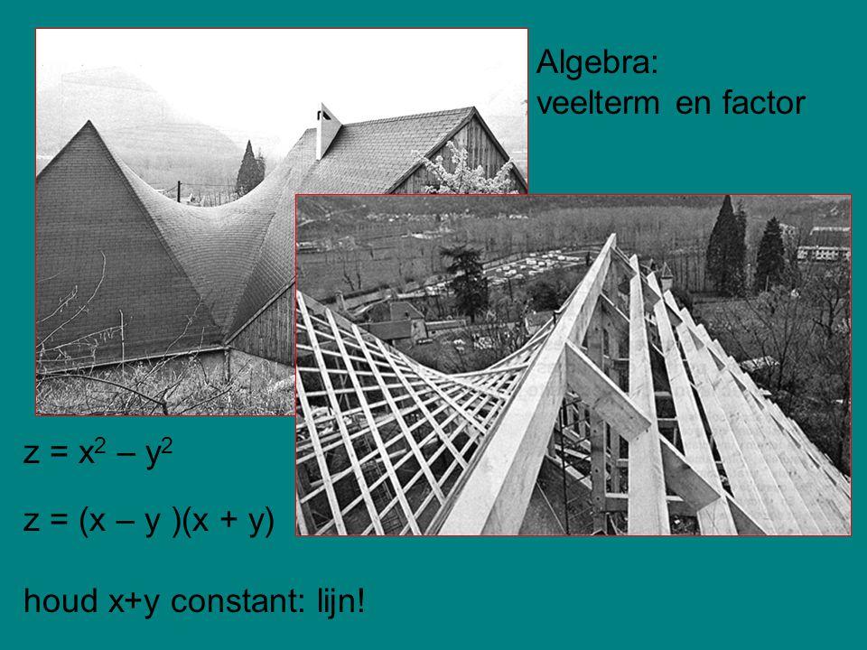 z = x 2 – y 2 z = (x – y )(x + y) houd x+y constant: lijn! Algebra: veelterm en factor