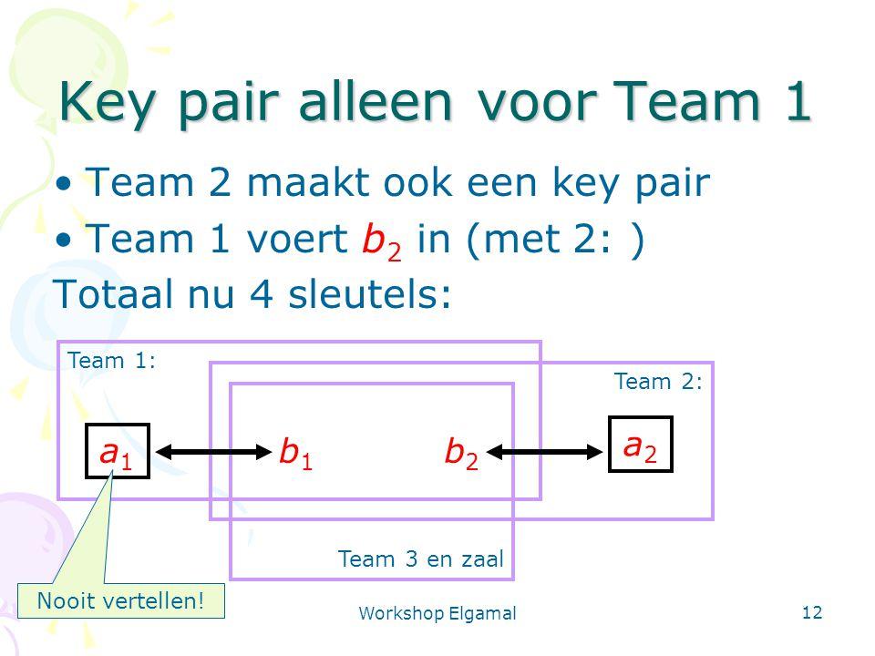 Workshop Elgamal 12 Team 3 en zaal Team 2: Team 1: Key pair alleen voor Team 1 Team 2 maakt ook een key pair Team 1 voert b 2 in (met 2: ) Totaal nu 4 sleutels: a1a1 a2a2 b2b2 b1b1 Nooit vertellen!