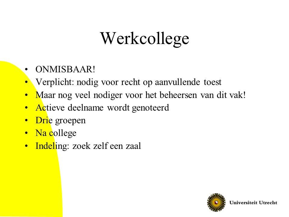 Werkcollege ONMISBAAR.