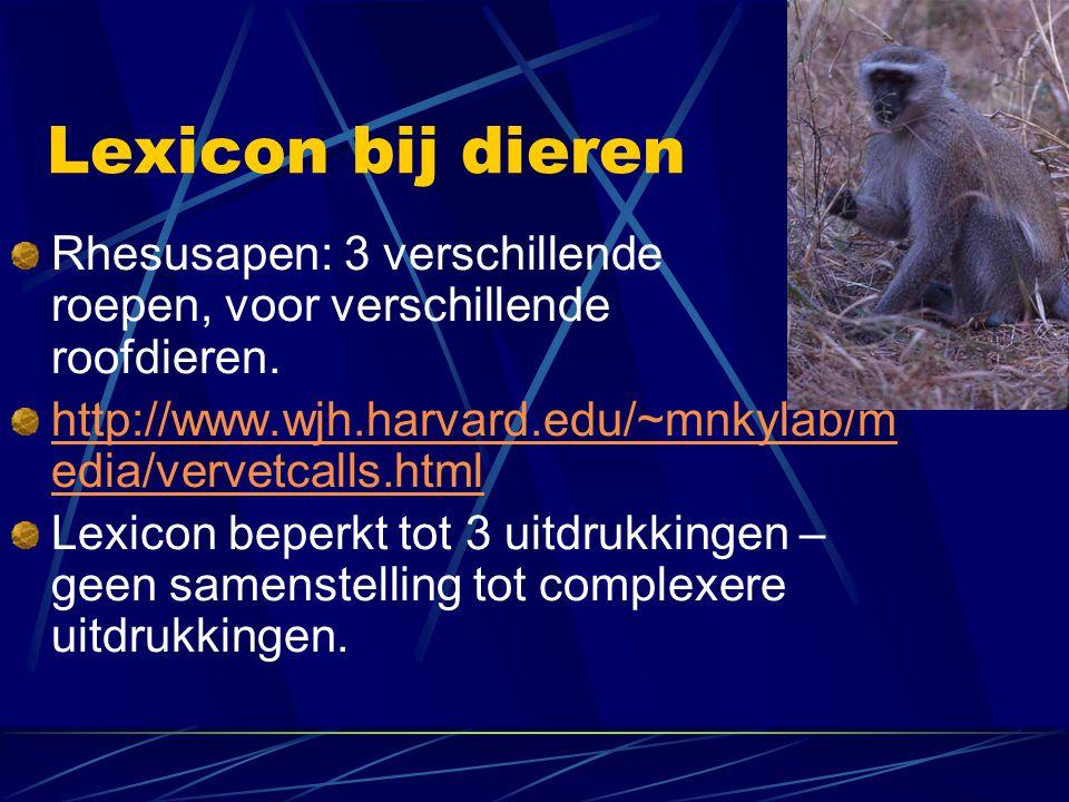 Lexicon bij dieren Rhesusapen: 3 verschillende roepen, voor verschillende roofdieren. http://www.wjh.harvard.edu/~mnkylab/m edia/vervetcalls.html Lexi