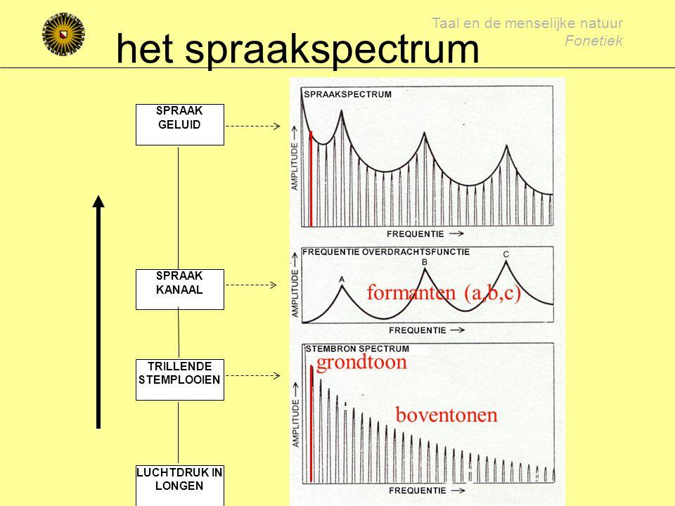 Taal en de menselijke natuur Fonetiek klinkerakoestiek Periodiek brongeluid grondtoon en boventonen Resonanties in mond-keelholte versterking van frequenties, afhankelijk van de vorm van de stemweg (articulatie) die resonanties noemen we formanten formanten zijn klinkerspecifiek